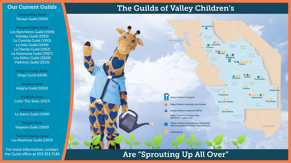 The Guilds of Valley Children's Map